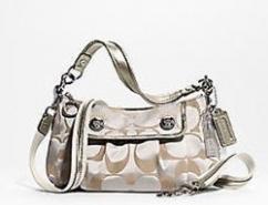 Coach Signature Poppy Groovy Shoulder Crossbody Bag Purse 13833 Platinum
