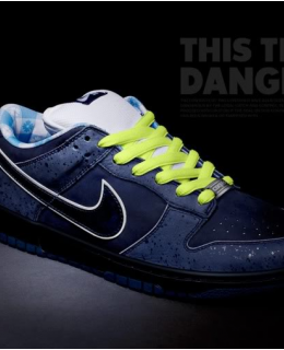 NIKE SB BLUE LOBSTER CONCEPTS