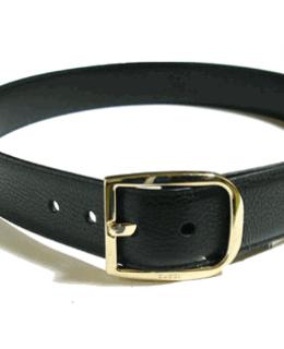 Gucci Designer Belt